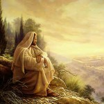 Gospel Reflection: Sixteenth Sunday in Ordinary Time
